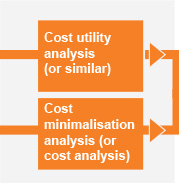 Cost utility analysis. Cost minimilisation analysis.